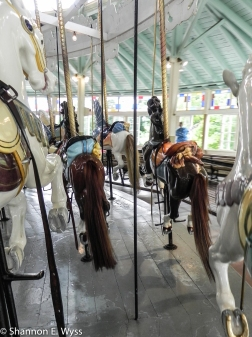 Several carousel horses, photographed from behind, on a moving merry-go-round. Crescent Park Carousel, Riverside, Rhode Island